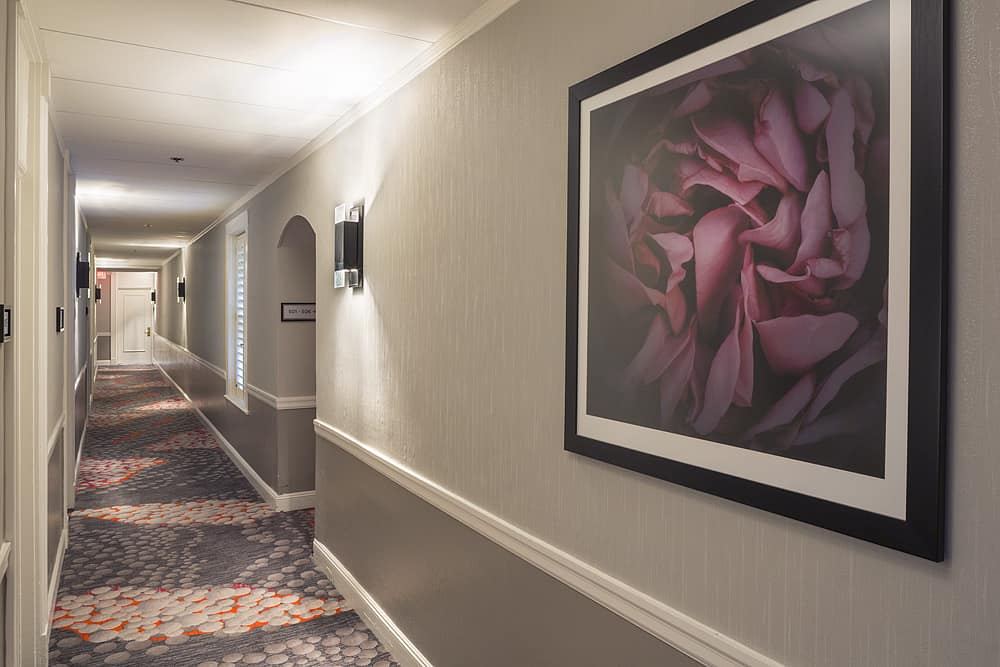 Hallway with peony painting and patterned carpet.